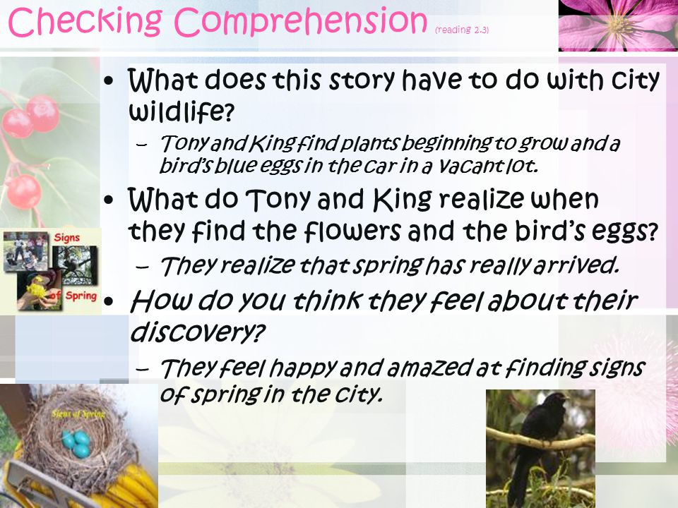 Checking Comprehension (reading 2.3)