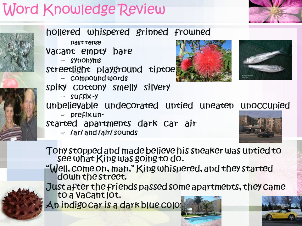 Word Knowledge Review hollered whispered grinned frowned
