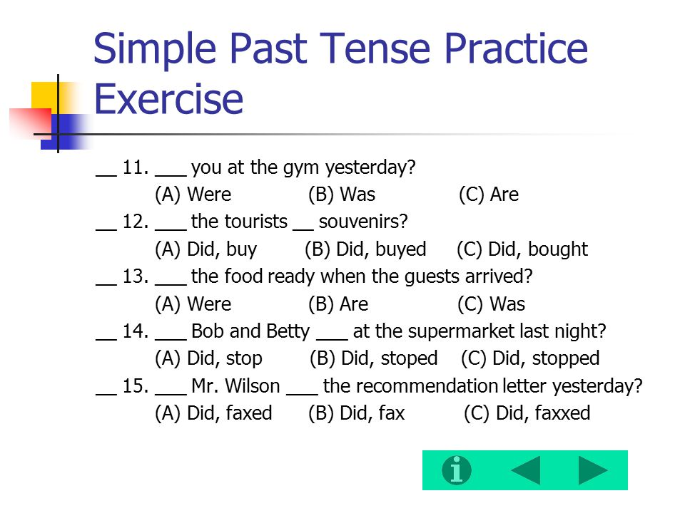 Simple Past Tense Practice Exercise