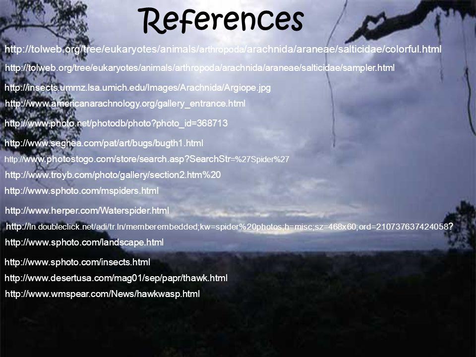 References http://tolweb.org/tree/eukaryotes/animals/arthropoda/arachnida/araneae/salticidae/colorful.html.