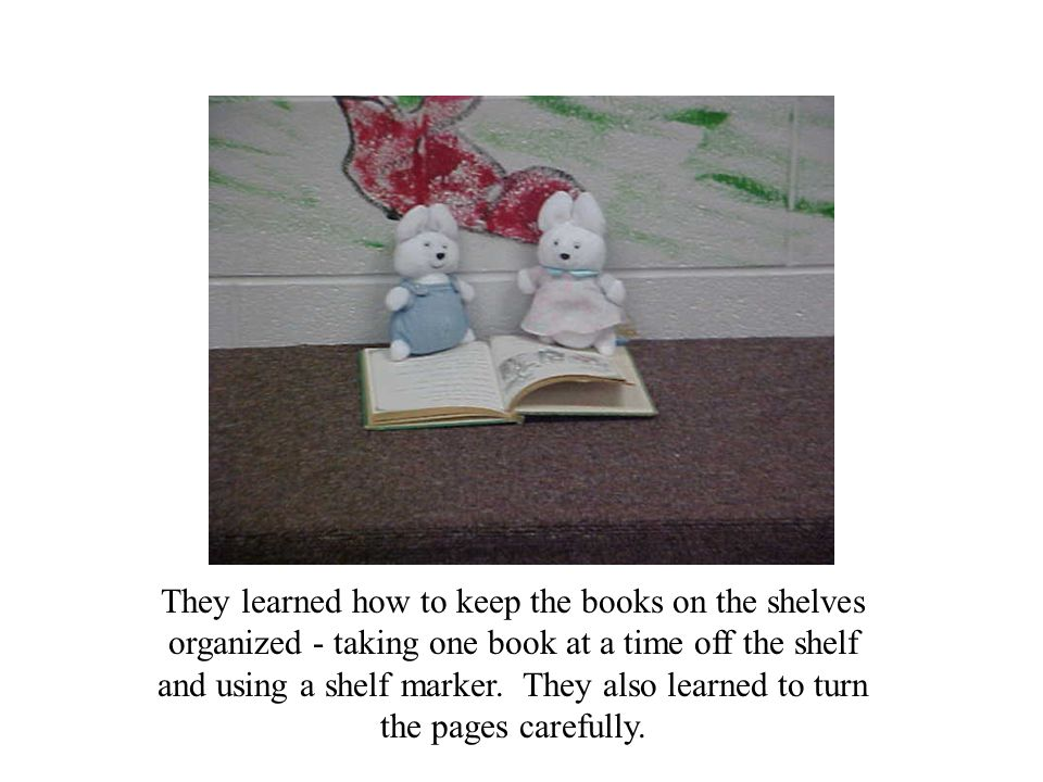 They learned how to keep the books on the shelves organized - taking one book at a time off the shelf and using a shelf marker.