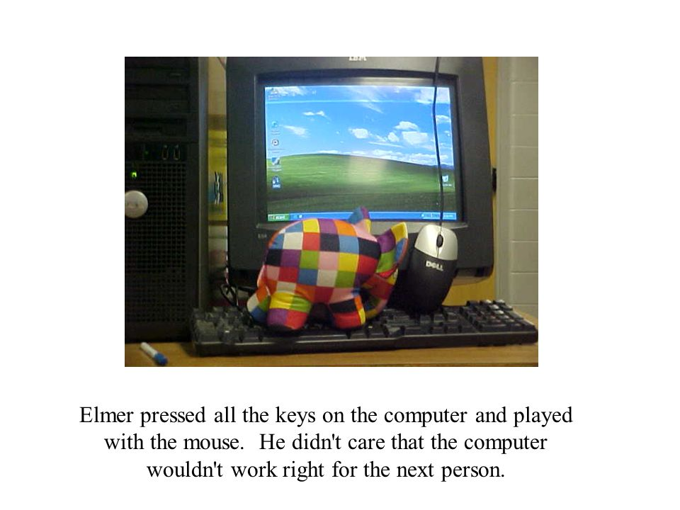 Elmer pressed all the keys on the computer and played with the mouse