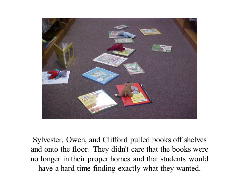 Sylvester, Owen, and Clifford pulled books off shelves and onto the floor.