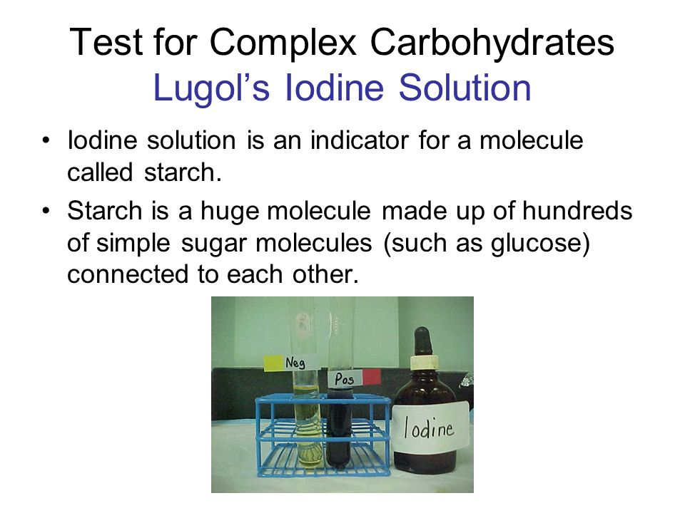 Test for Complex Carbohydrates Lugol's Iodine Solution