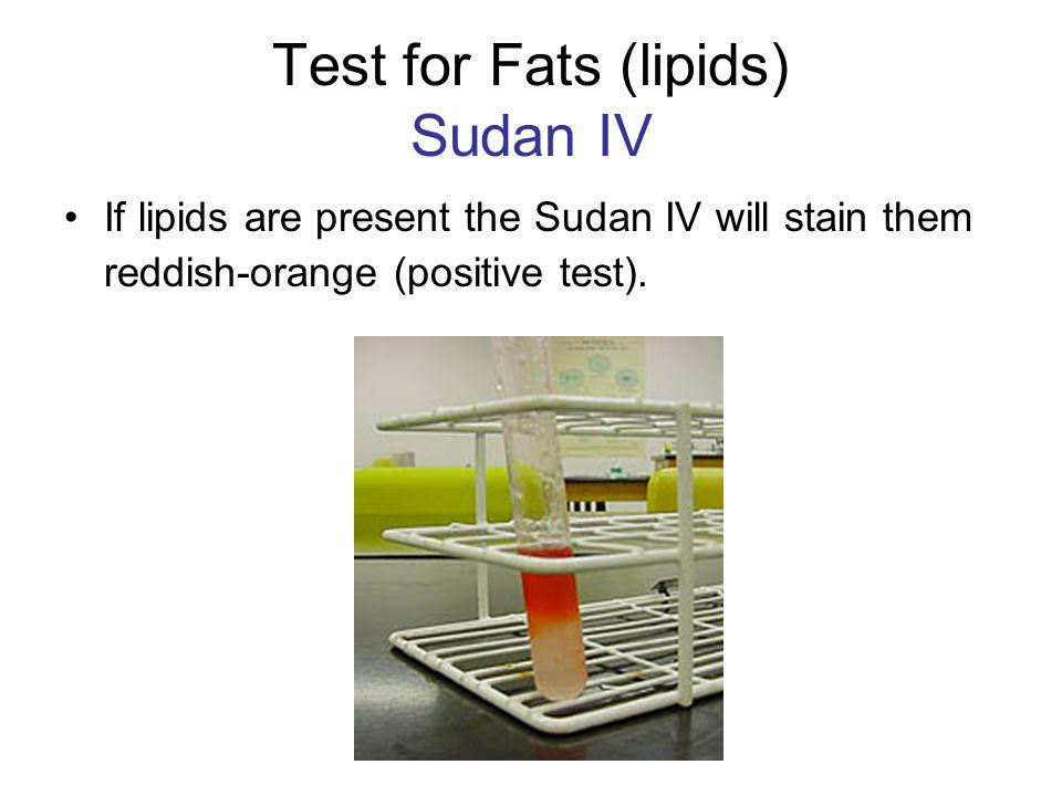Test for Fats (lipids) Sudan IV