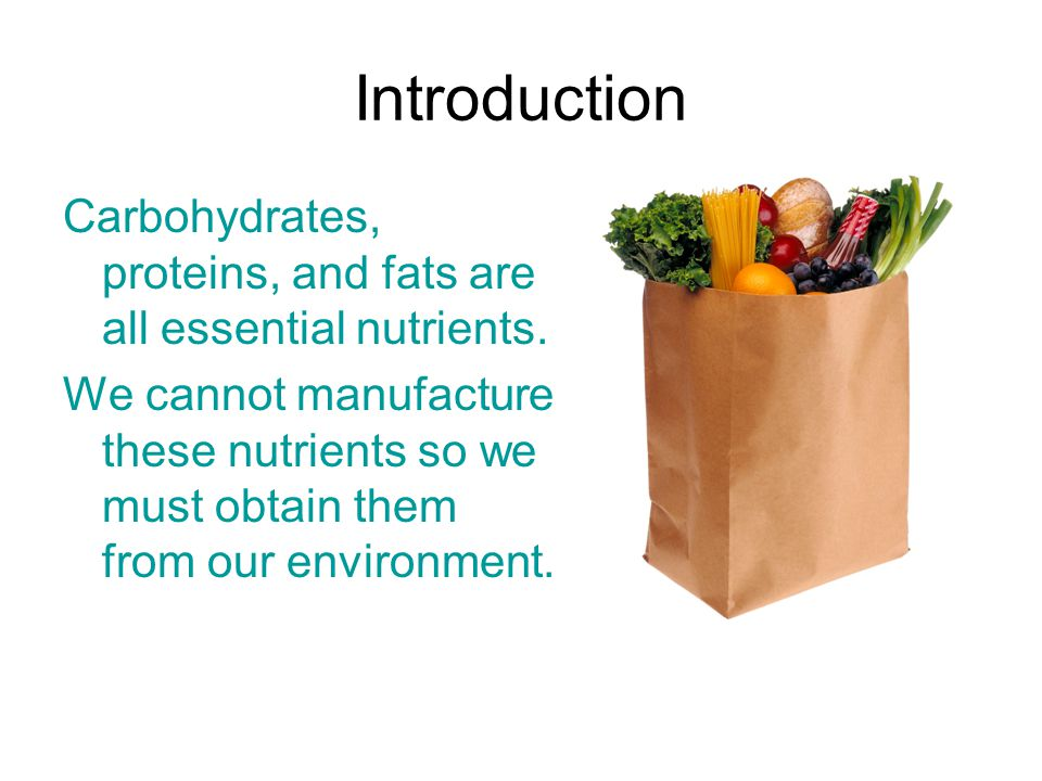 Introduction Carbohydrates, proteins, and fats are all essential nutrients.