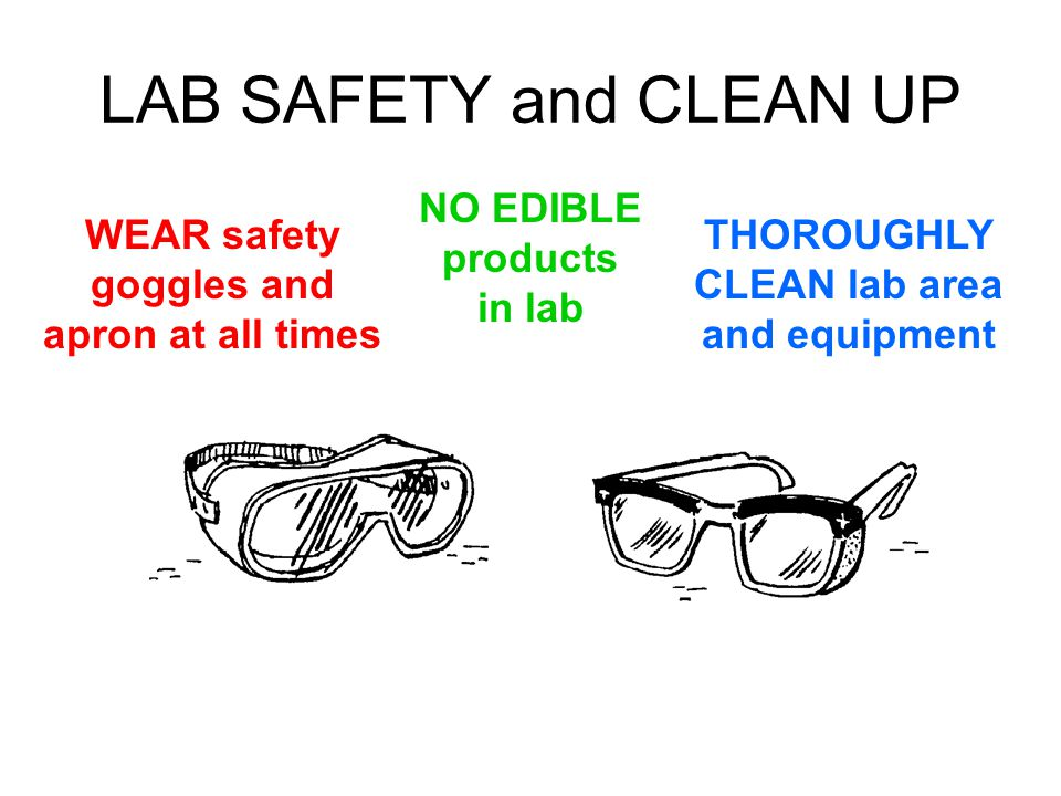 LAB SAFETY and CLEAN UP NO EDIBLE products in lab