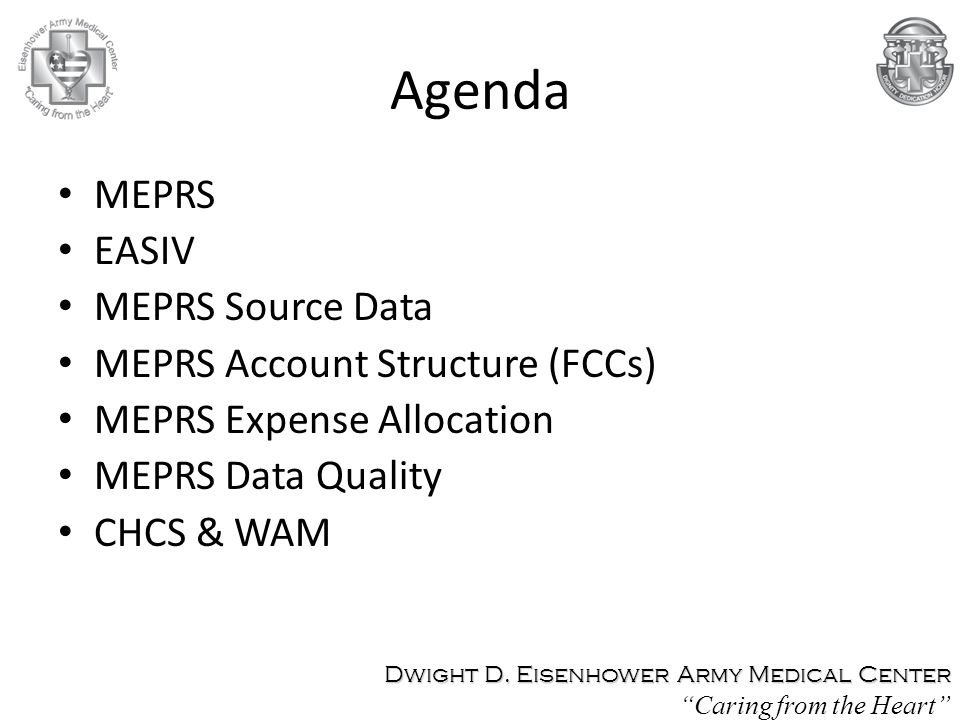 Agenda MEPRS EASIV MEPRS Source Data MEPRS Account Structure (FCCs)