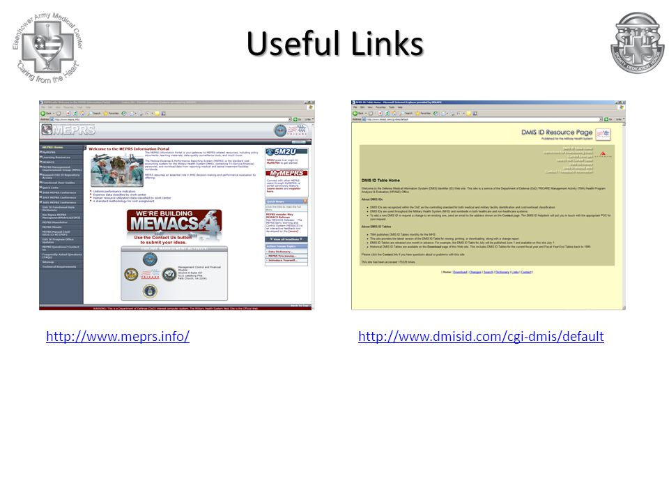 Useful Links http://www.meprs.info/