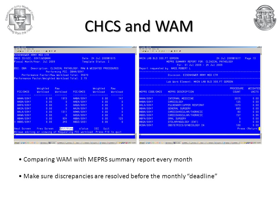CHCS and WAM Comparing WAM with MEPRS summary report every month