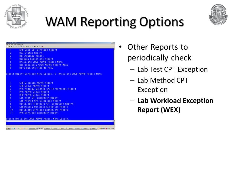 WAM Reporting Options Other Reports to periodically check