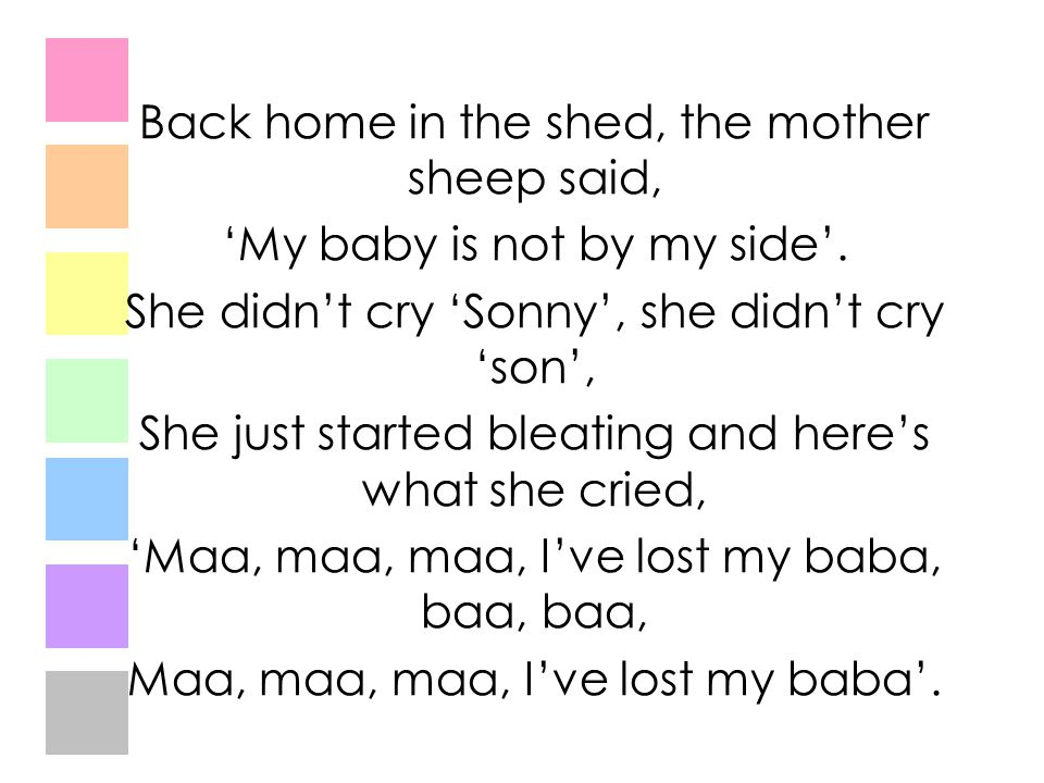 Back home in the shed, the mother sheep said,