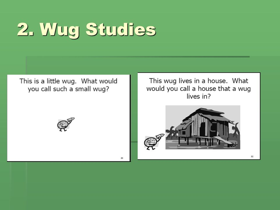 2. Wug Studies