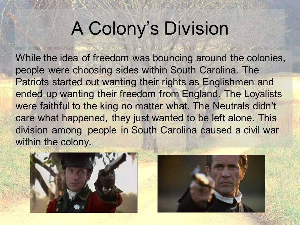 A Colony's Division