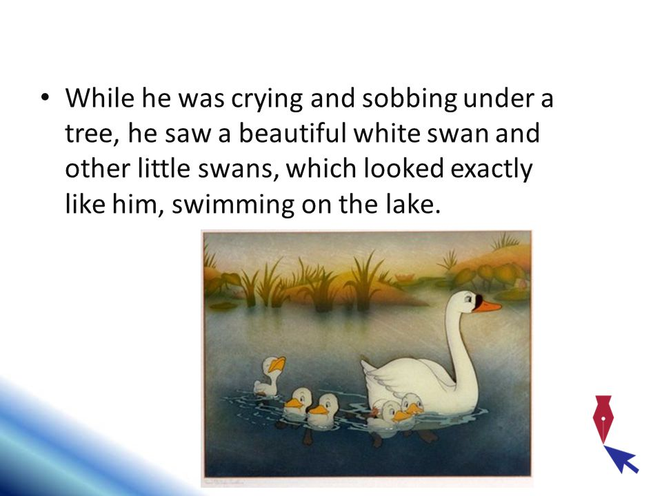 While he was crying and sobbing under a tree, he saw a beautiful white swan and other little swans, which looked exactly like him, swimming on the lake.