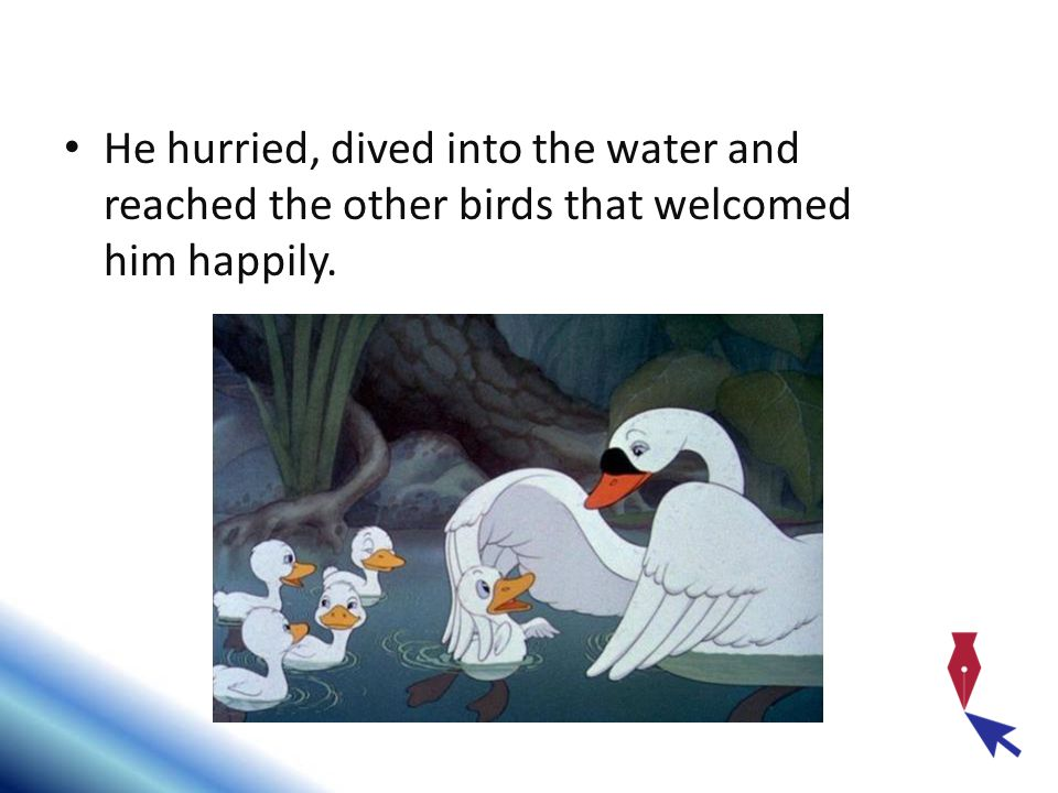 He hurried, dived into the water and reached the other birds that welcomed him happily.