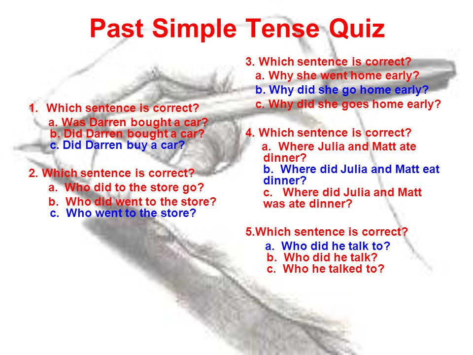 Past Simple Tense Quiz 3. Which sentence is correct