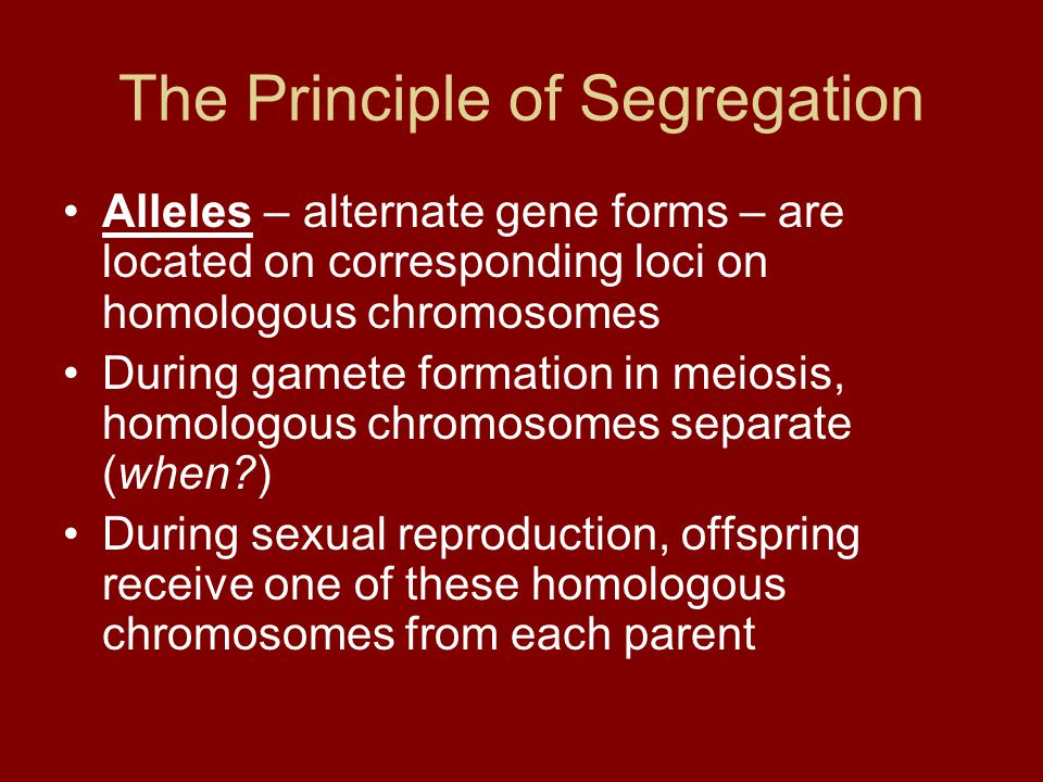 The Principle of Segregation