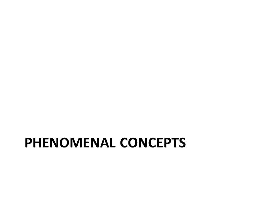 Phenomenal concepts