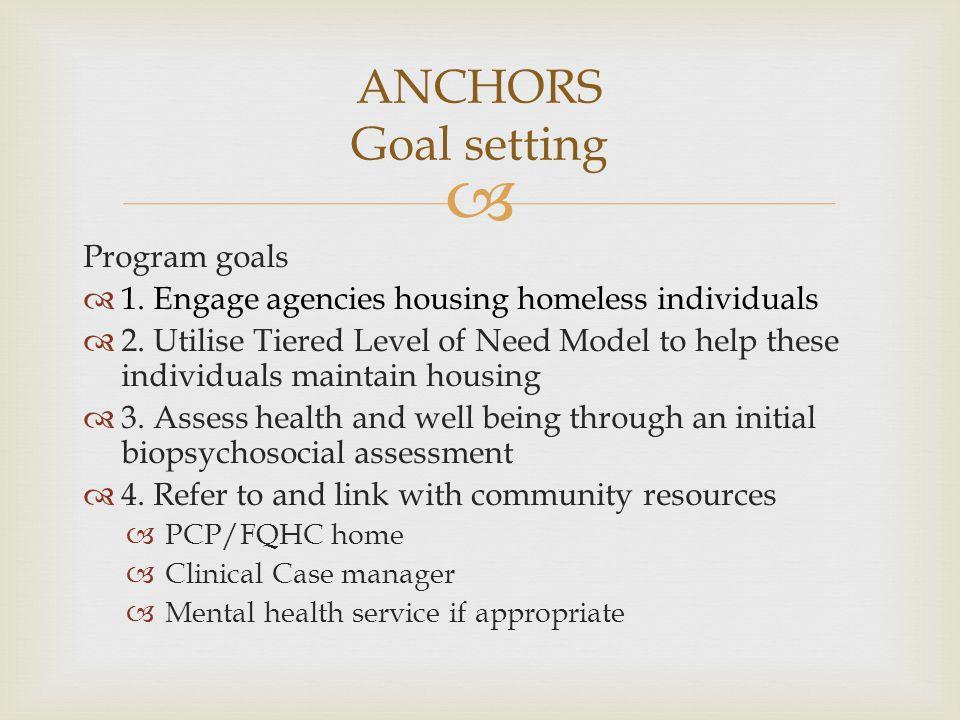 ANCHORS Goal setting Program goals