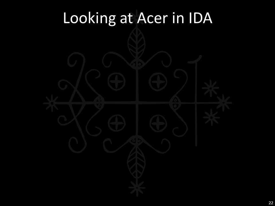 Looking at Acer in IDA