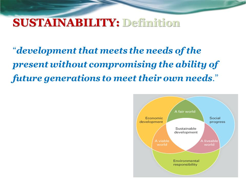 SUSTAINABILITY: Definition