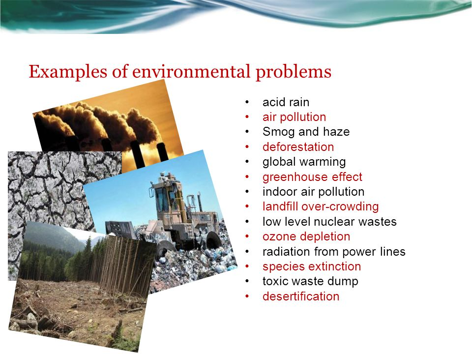 Examples of environmental problems
