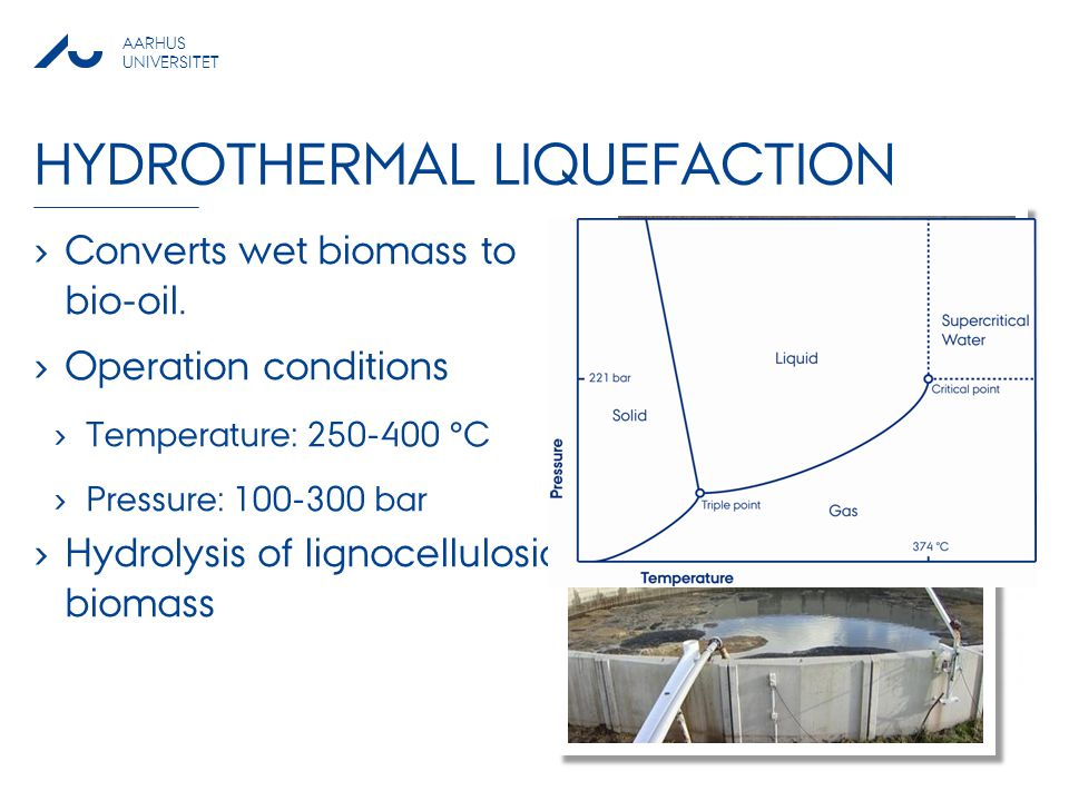 Hydrothermal Liquefaction