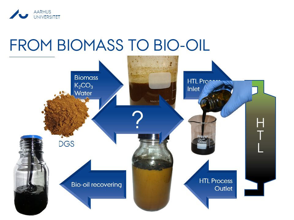 From biomass to bio-oil