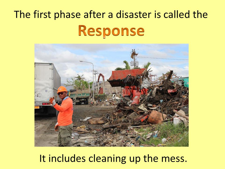 The first phase after a disaster is called the
