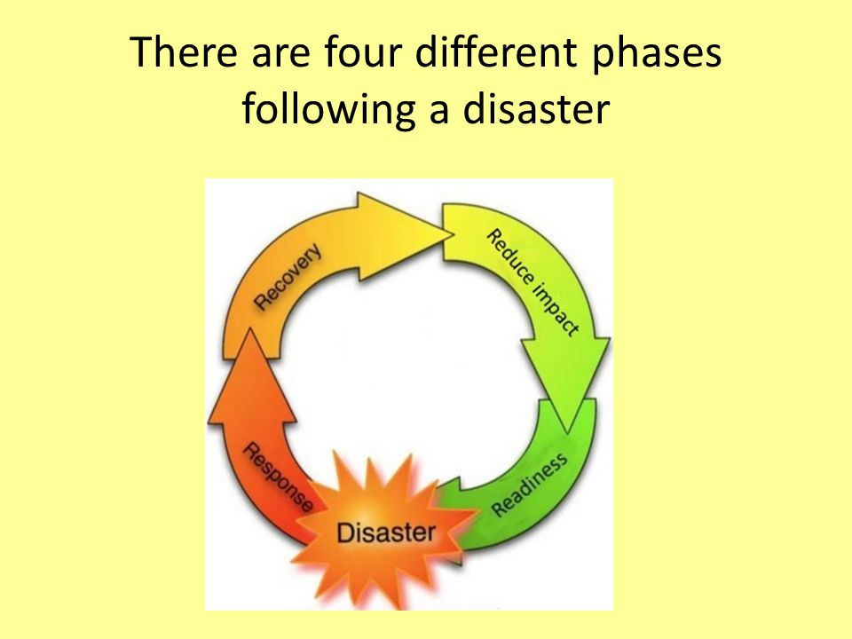 There are four different phases following a disaster
