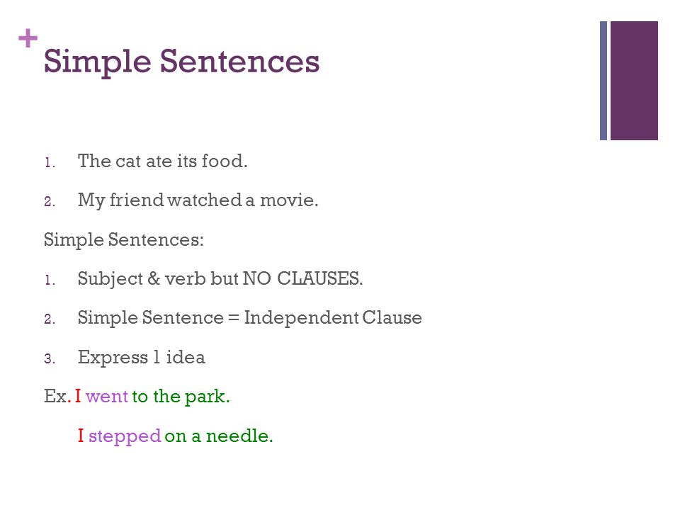 Simple Sentences The cat ate its food. My friend watched a movie.