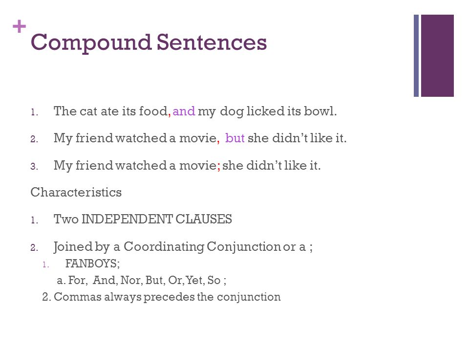 Compound Sentences The cat ate its food, and my dog licked its bowl.