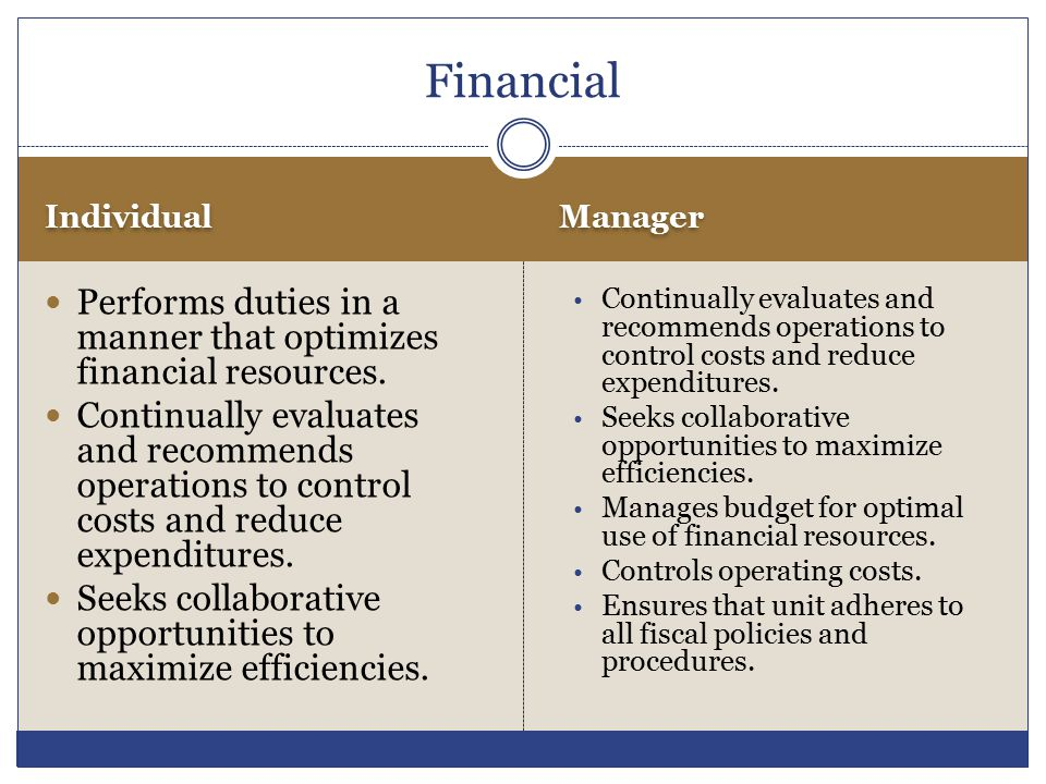 Financial Individual. Manager. Performs duties in a manner that optimizes financial resources.