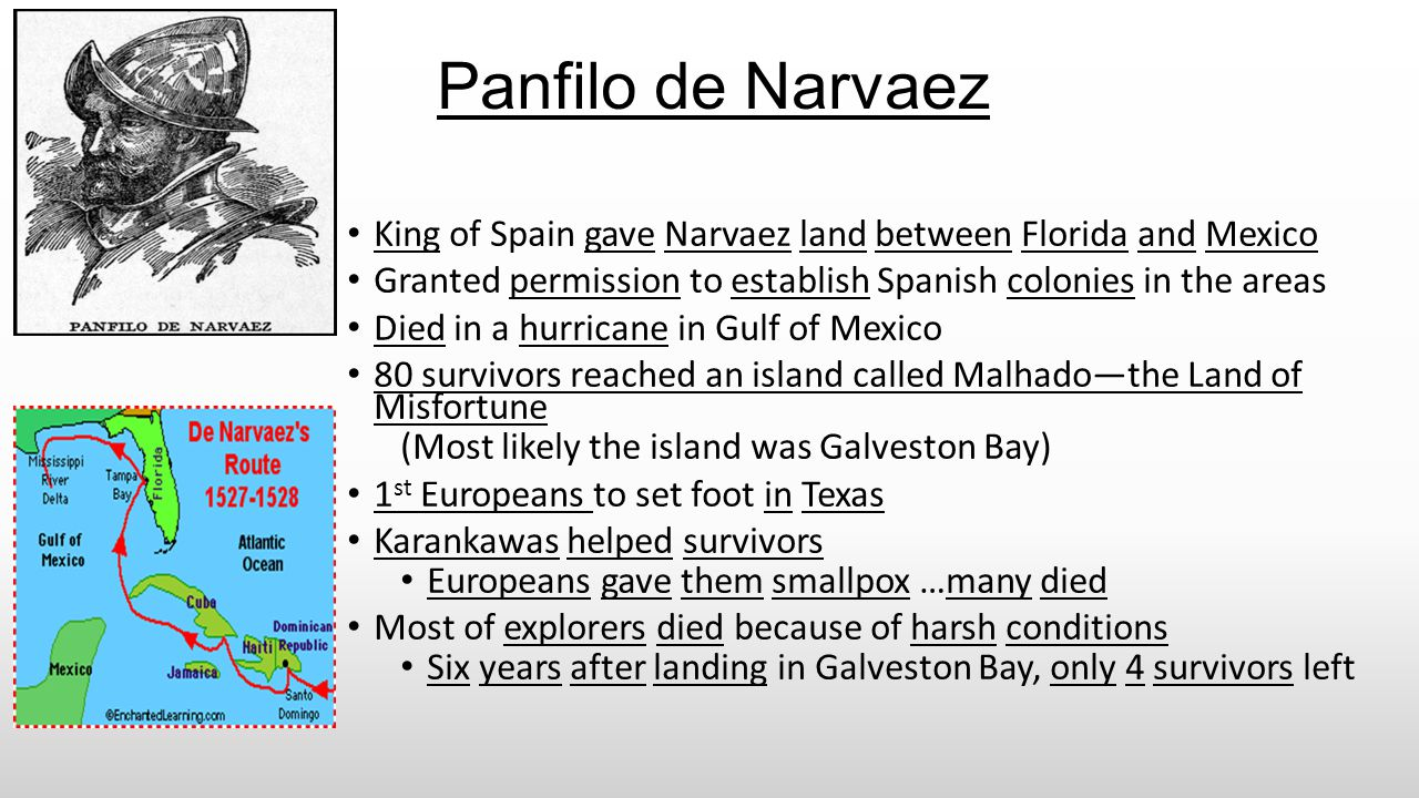 Panfilo de Narvaez King of Spain gave Narvaez land between Florida and Mexico. Granted permission to establish Spanish colonies in the areas.