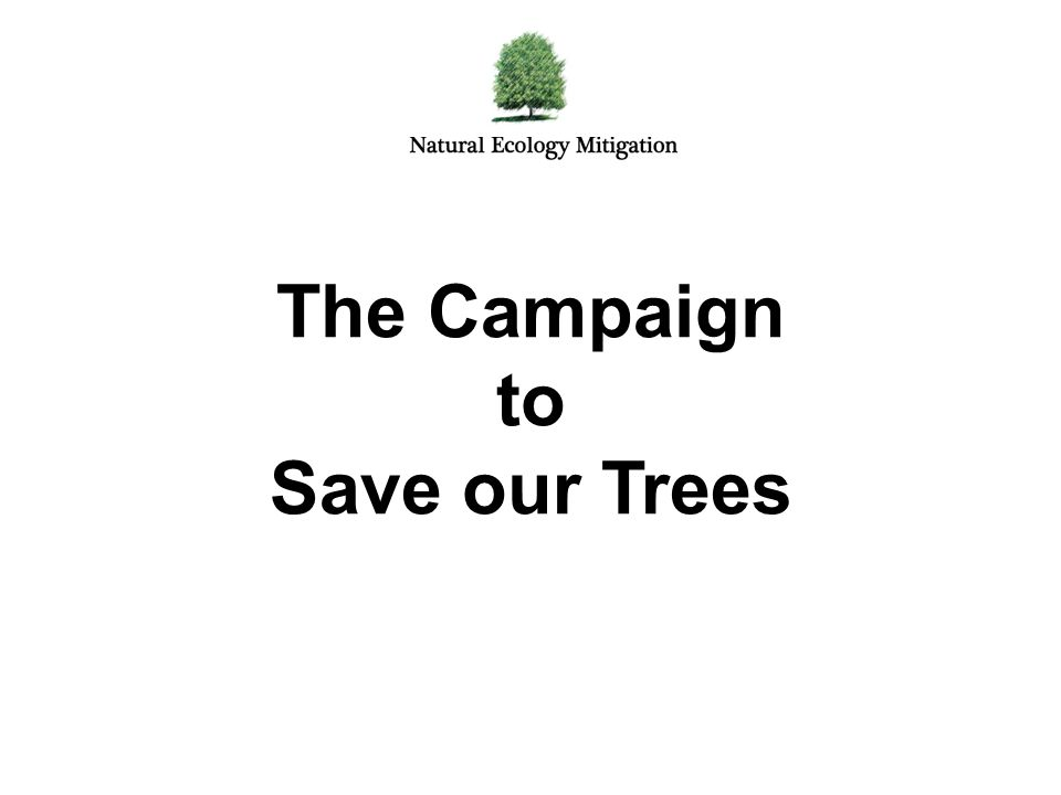 The Campaign to Save our Trees