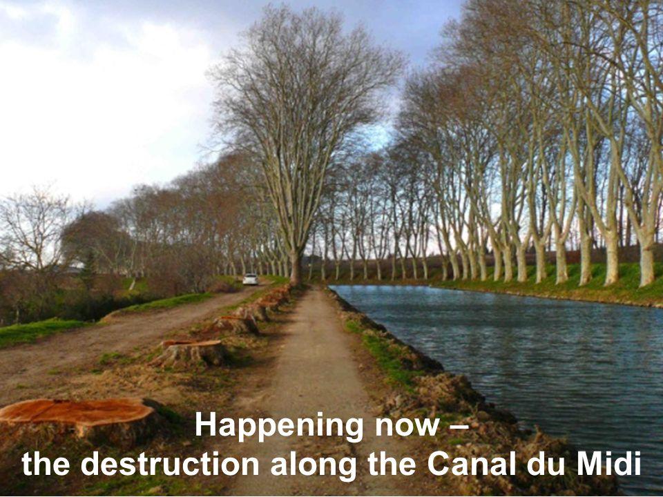the destruction along the Canal du Midi
