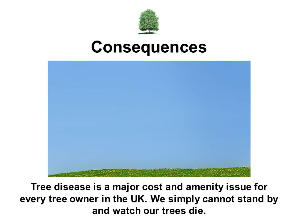 Consequences Tree disease is a major cost and amenity issue for every tree owner in the UK.