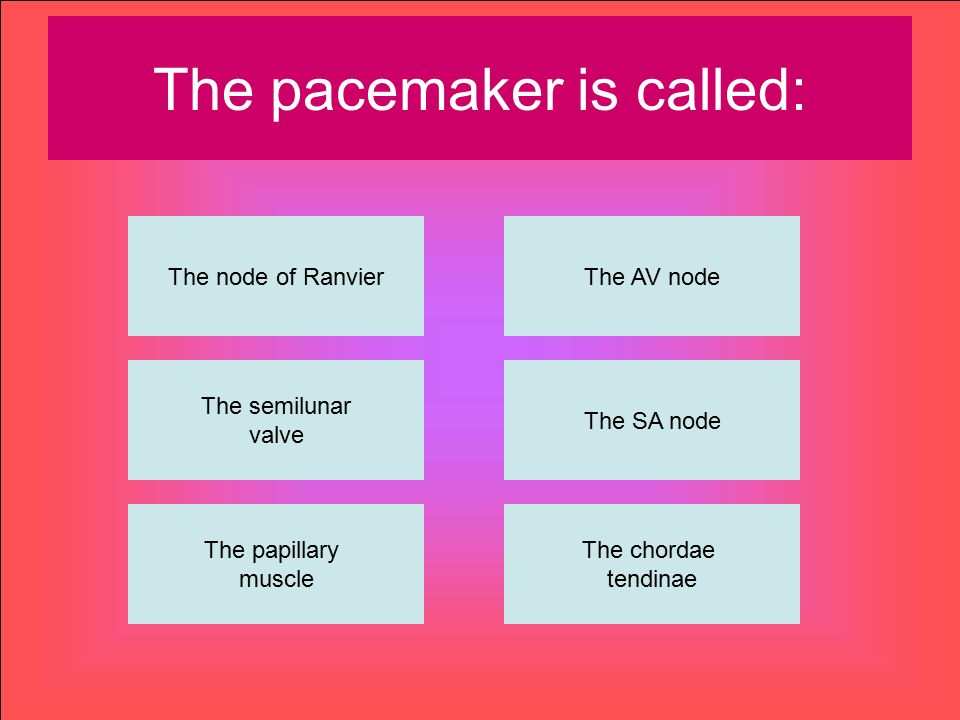 The pacemaker is called: