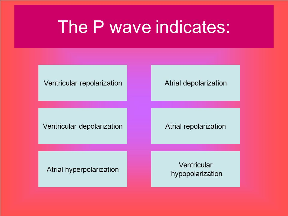 The P wave indicates: Ventricular repolarization Atrial depolarization