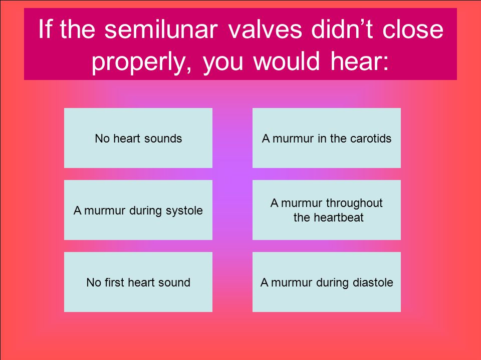 If the semilunar valves didn't close properly, you would hear: