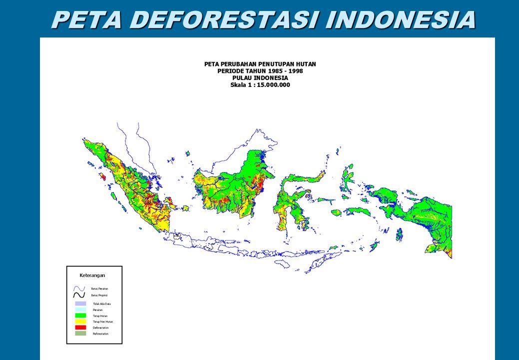 PETA DEFORESTASI INDONESIA