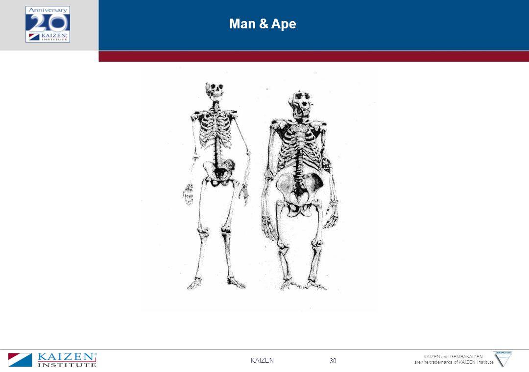 Man & Ape
