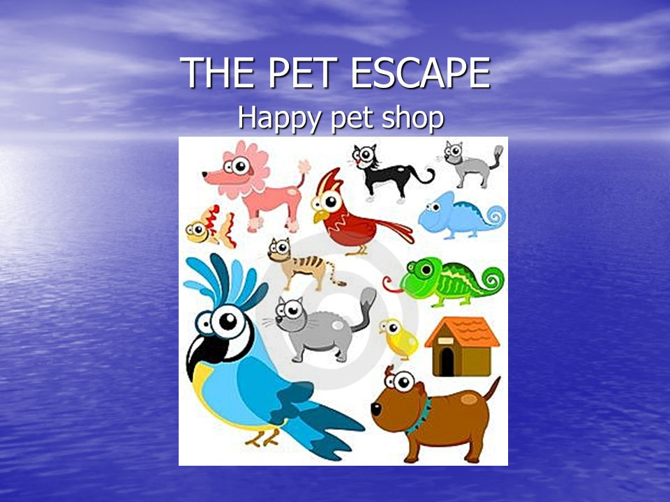 THE PET ESCAPE Happy pet shop