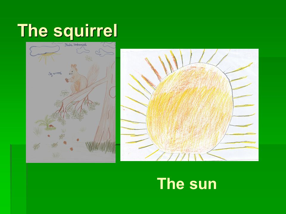The squirrel The sun