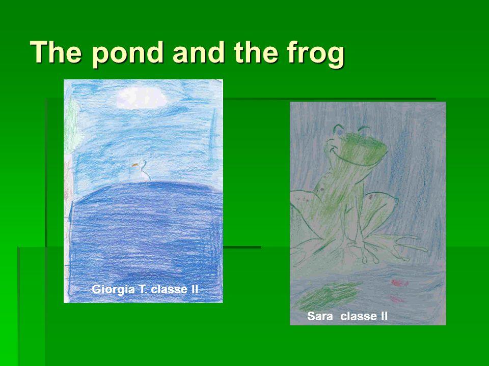 The pond and the frog Giorgia T. classe II Sara classe II
