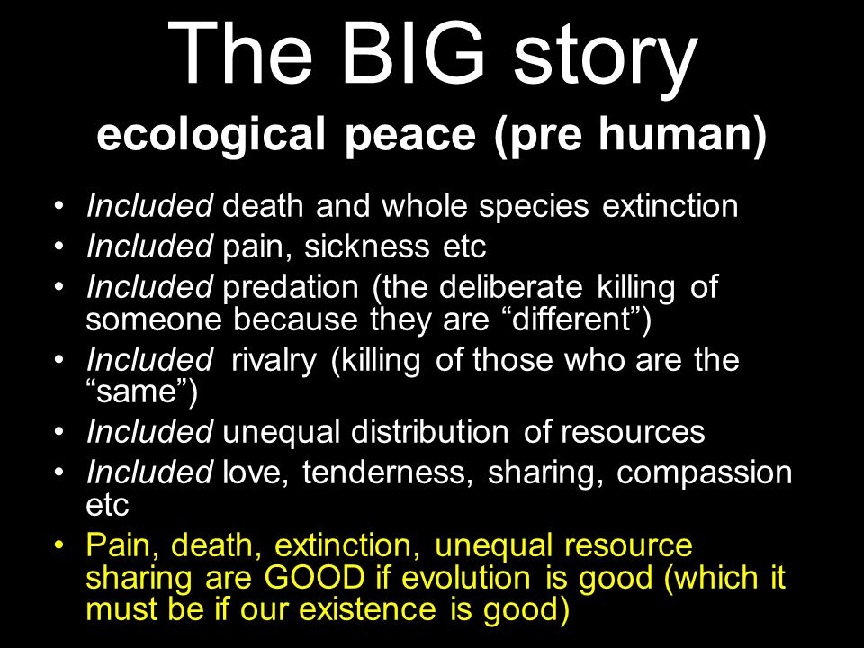 The BIG story ecological peace (pre human)