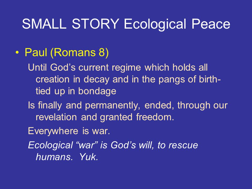 SMALL STORY Ecological Peace