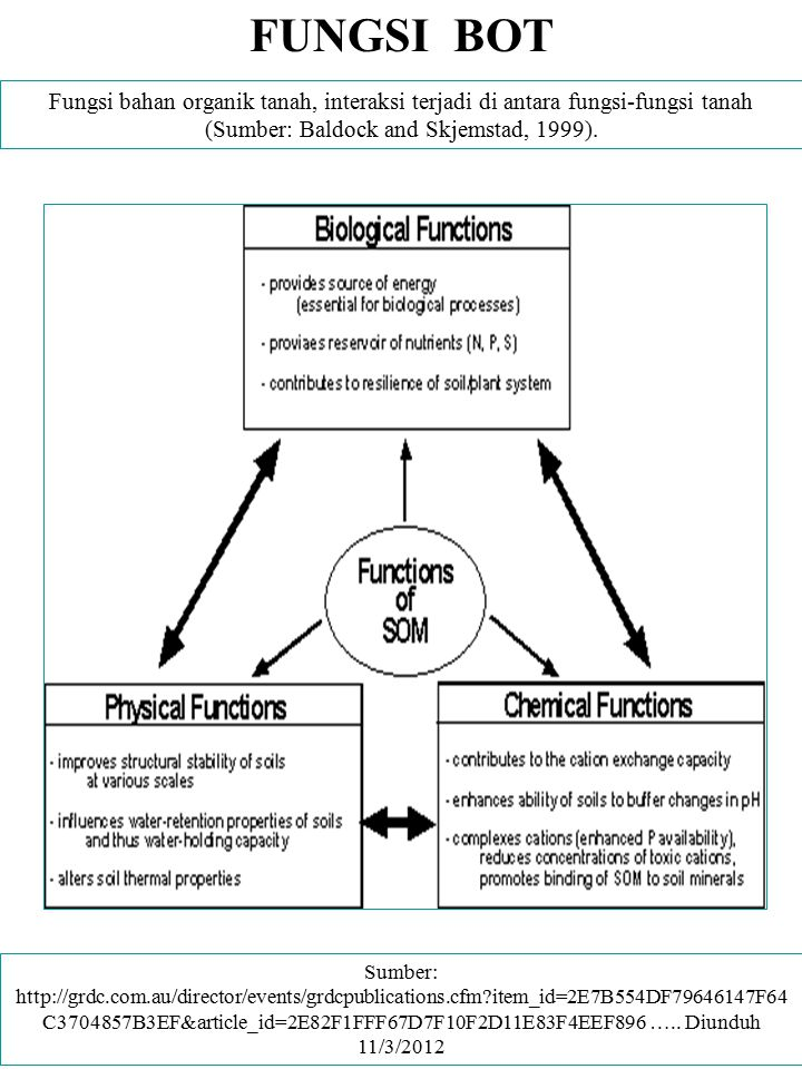 FUNGSI BOT Fungsi bahan organik tanah, interaksi terjadi di antara fungsi-fungsi tanah (Sumber: Baldock and Skjemstad, 1999).