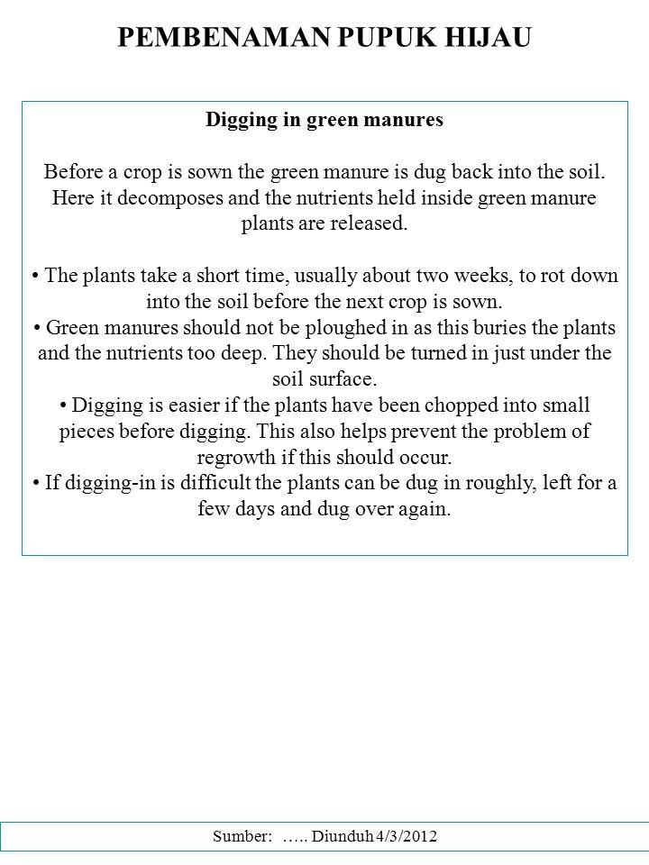 PEMBENAMAN PUPUK HIJAU Digging in green manures